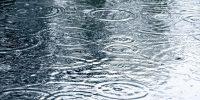 Lace Rain